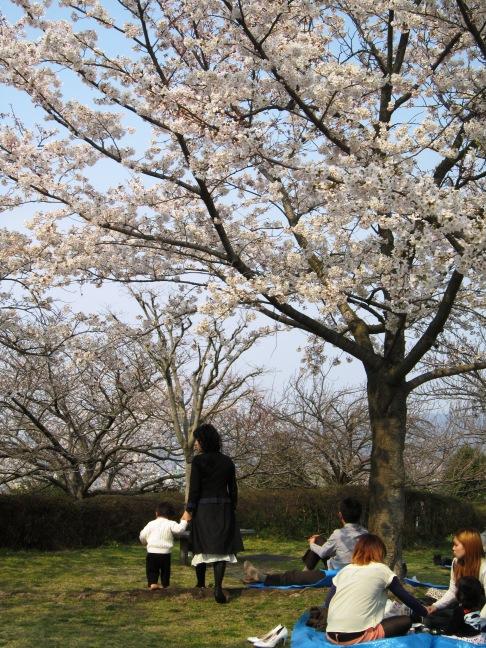 2012年4月5日(木) 大安吉日_f0191324_8275982.jpg