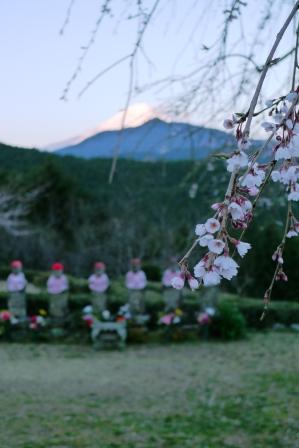 六地蔵、遠くに富士山、サクラ咲く。_f0177373_20515480.jpg