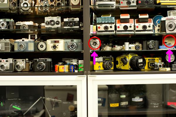 Nikon D800で50mmレンズをテスト!_b0194208_1851227.jpg