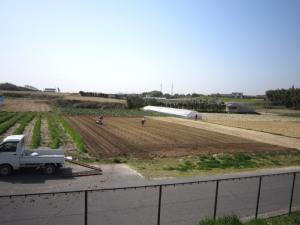 トウモロコシの場作り_d0120421_11271746.jpg