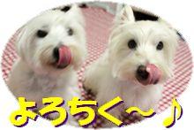 f0084422_002894.jpg