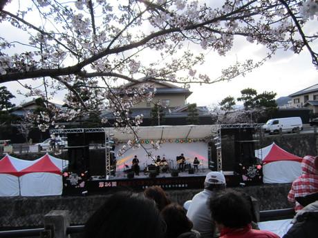 芦屋さくら祭り_f0205367_17554234.jpg