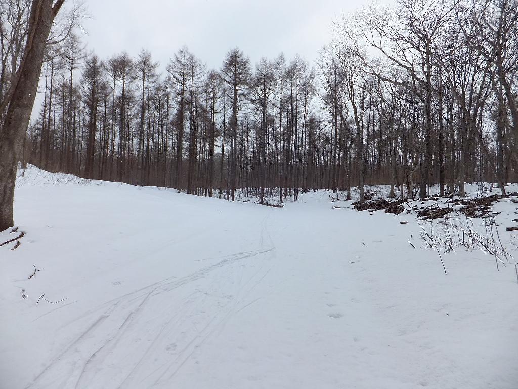 歩くスキー_f0138096_22585085.jpg