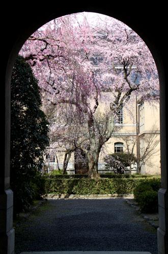 京都府庁 中庭_e0048413_20255854.jpg