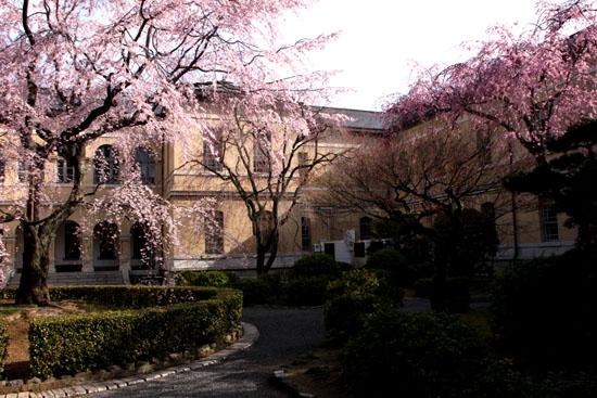 京都府庁 中庭_e0048413_20262438.jpg