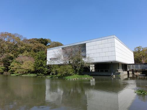 鎌倉のお花見_e0174913_11132956.jpg