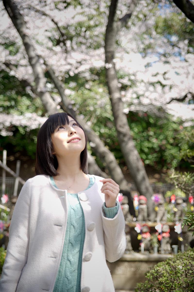 120408-芝公園・桜ロケに行ってきた。(速報版_e0096928_16574462.jpg