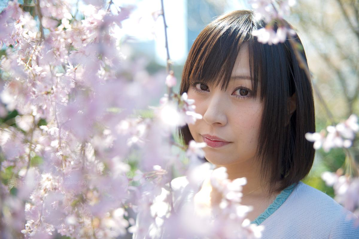 120408-芝公園・桜ロケに行ってきた。(速報版_e0096928_165878.jpg