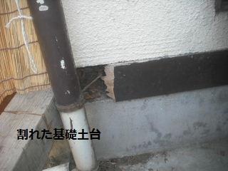 f0031037_1954667.jpg
