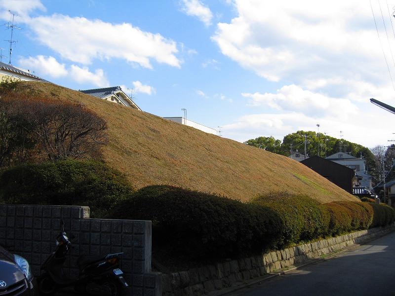 京都の御土居跡(おどいあと)-その2_e0237645_7573156.jpg