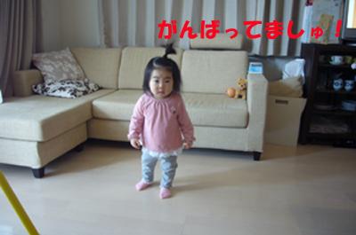 d0070047_16313051.jpg
