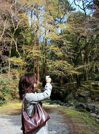 京都 桜めぐり♪_a0092659_22225976.jpg