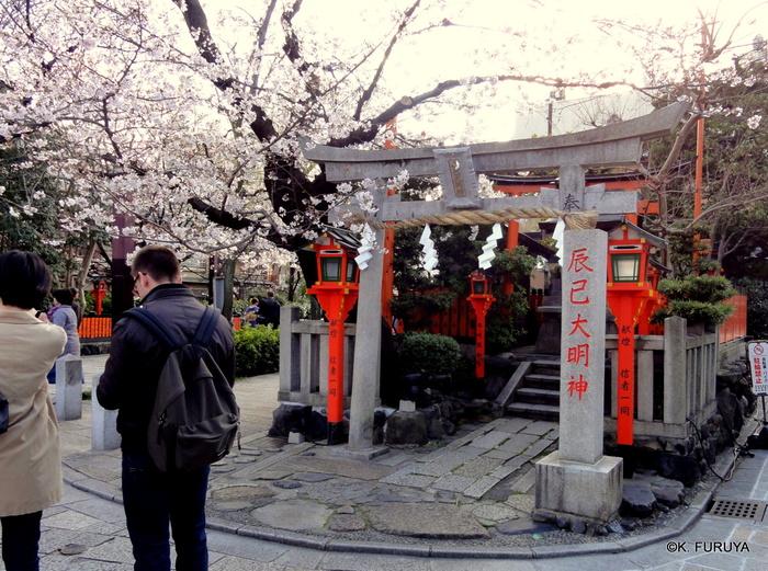 京都 桜めぐり♪_a0092659_22524283.jpg