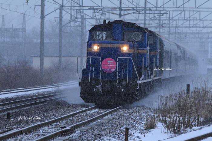 夜の玉ねぎ列車あんど朝の雲海より~_a0039860_10293179.jpg