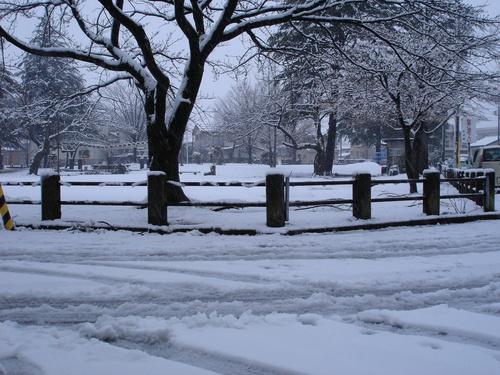 4月8日、なのに今日も雪です。_e0266363_9202166.jpg
