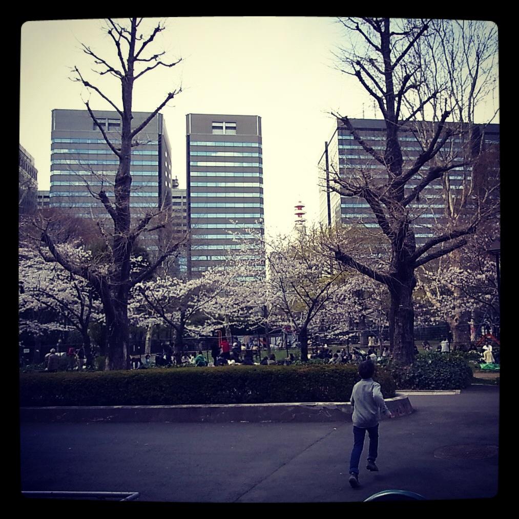 2012.4.7 TOKYO桜Ride ~桜セブンサミッツ縦走~_b0219778_11232559.jpg