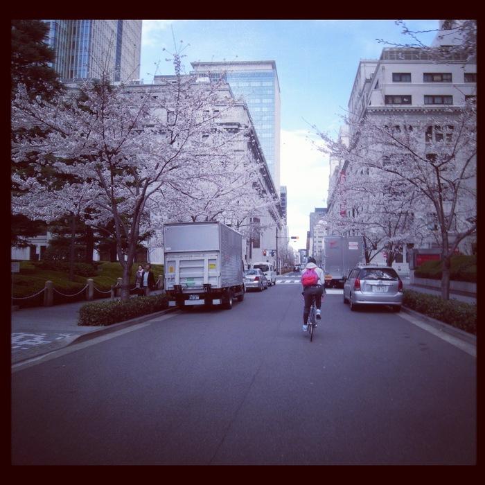 2012.4.7 TOKYO桜Ride ~桜セブンサミッツ縦走~_b0219778_11241447.jpg