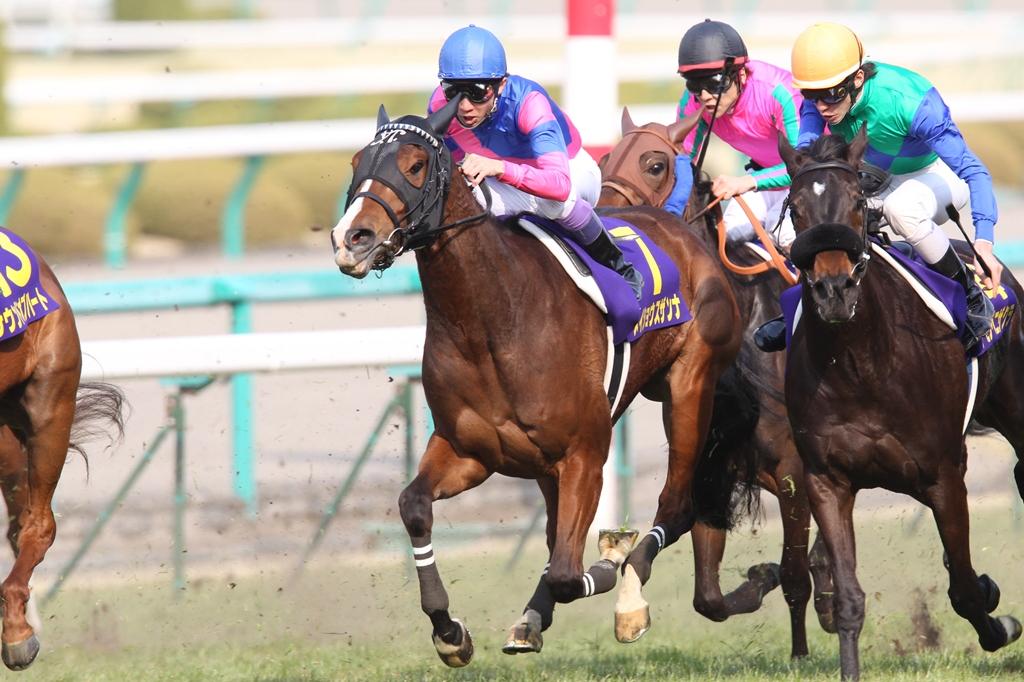 2012年4月8日 桜花賞_f0204898_1910645.jpg