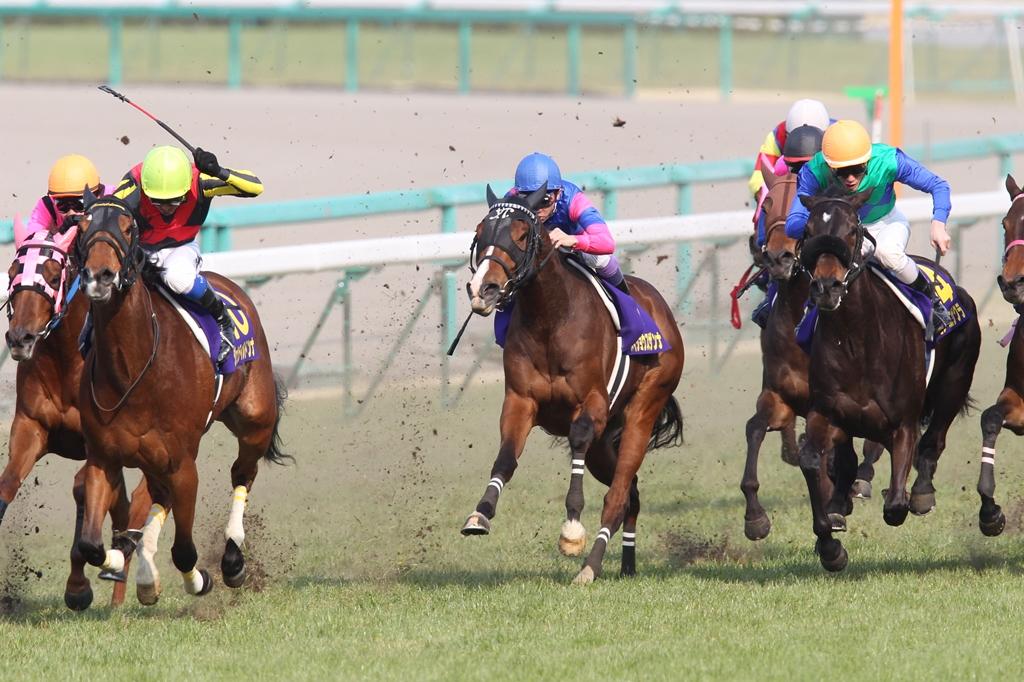 2012年4月8日 桜花賞_f0204898_1995362.jpg