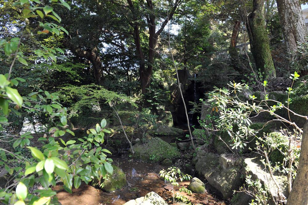 宝満宮 竃門神社 桜の季節_a0042310_10104528.jpg