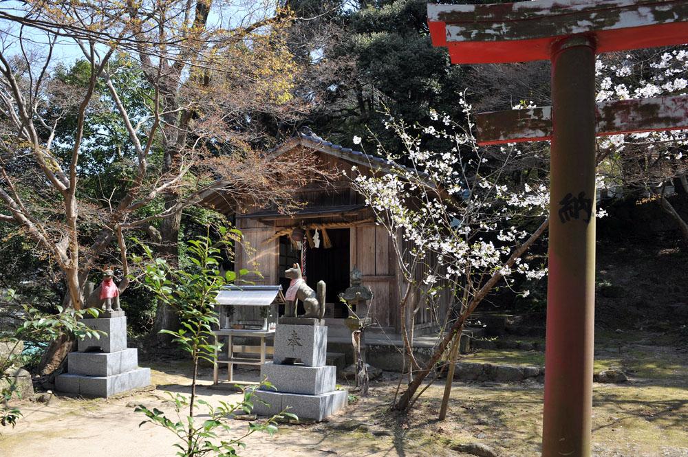 宝満宮 竃門神社 桜の季節_a0042310_10124513.jpg