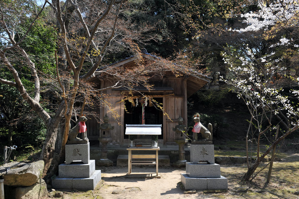 宝満宮 竃門神社 桜の季節_a0042310_101333.jpg