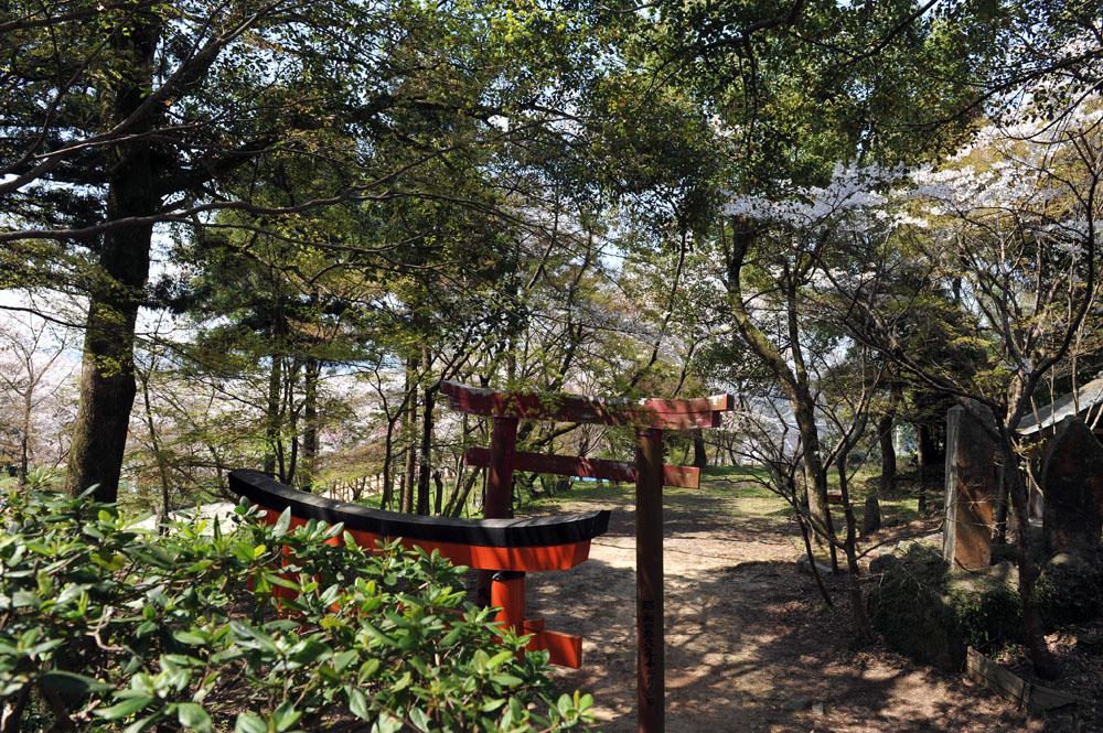 宝満宮 竃門神社 桜の季節_a0042310_1015958.jpg