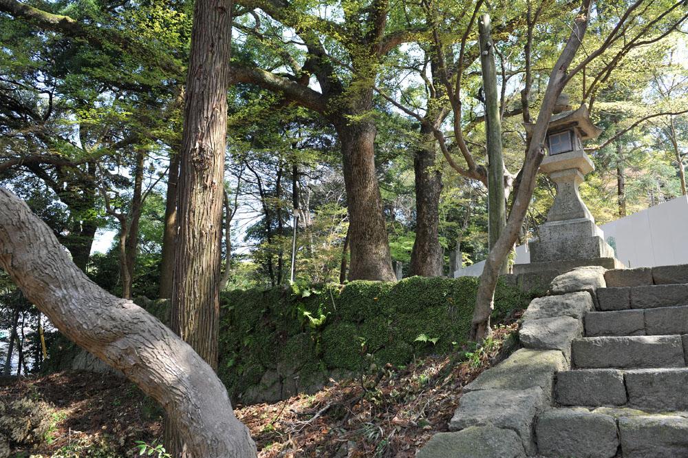 宝満宮 竃門神社 桜の季節_a0042310_103815.jpg