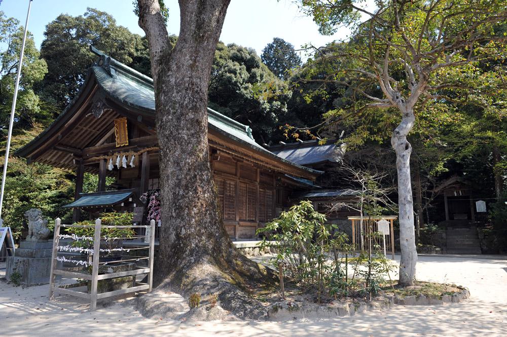 宝満宮 竃門神社 桜の季節_a0042310_1054910.jpg