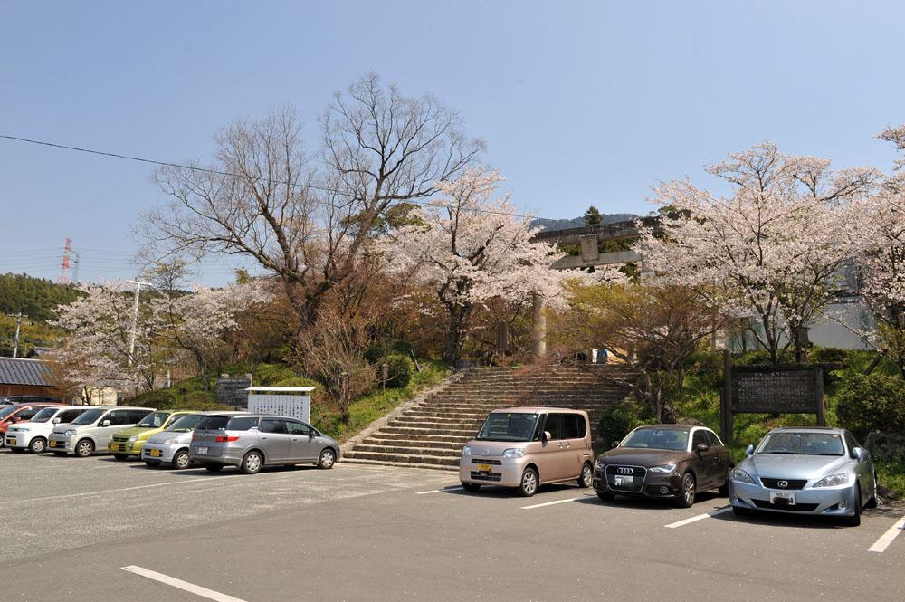 宝満宮 竃門神社 桜の季節_a0042310_9535766.jpg