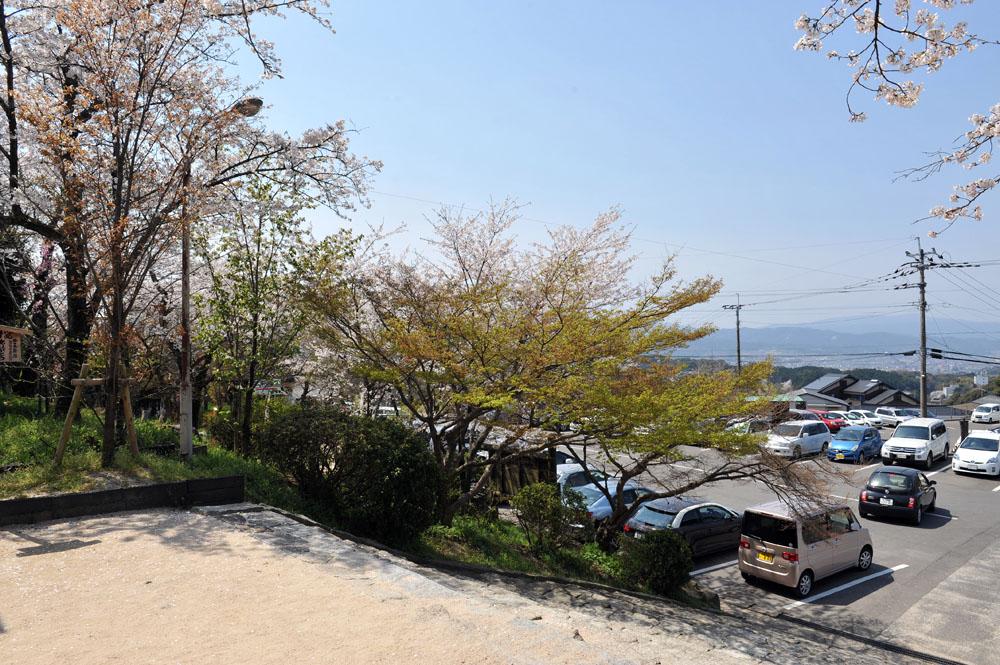 宝満宮 竃門神社 桜の季節_a0042310_9551027.jpg