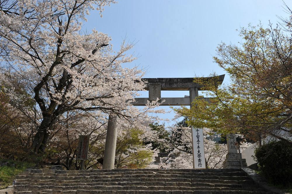 宝満宮 竃門神社 桜の季節_a0042310_955296.jpg
