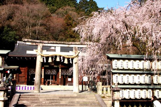 大石神社_e0048413_2123927.jpg