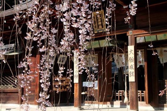 大石神社_e0048413_2125515.jpg
