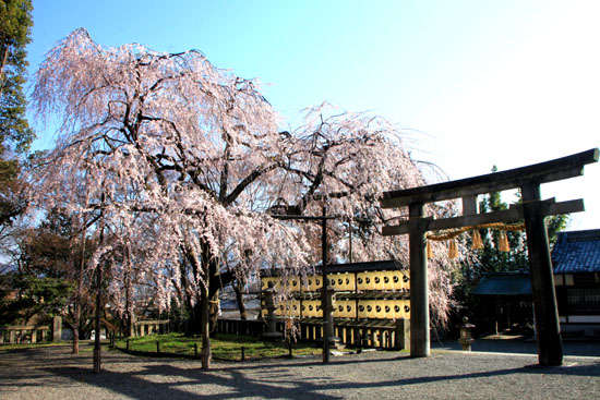大石神社_e0048413_213668.jpg