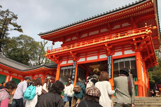 円山公園 満開_e0048413_21504642.jpg