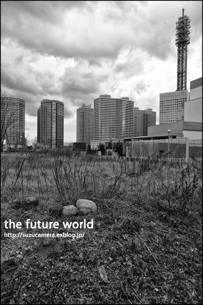 native of Yokohama 「すぐ先の未来は」_f0100215_123578.jpg