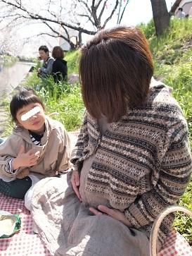 2012、桜_e0214646_18565391.jpg
