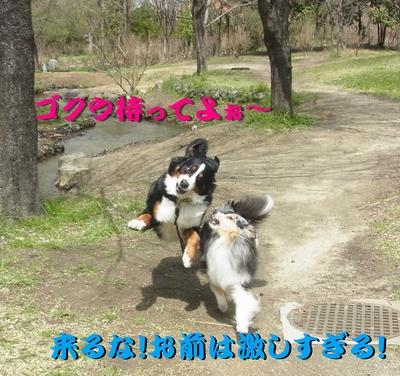 鶴見緑地公園_e0270846_23393184.jpg