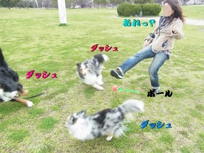 鶴見緑地公園_e0270846_23401491.jpg