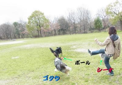 鶴見緑地公園_e0270846_23411966.jpg
