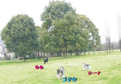 鶴見緑地公園_e0270846_23413979.jpg
