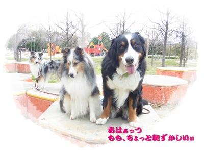 鶴見緑地公園_e0270846_23422413.jpg