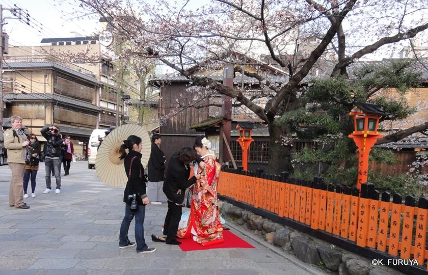 京都 桜めぐり♪_a0092659_8533997.jpg