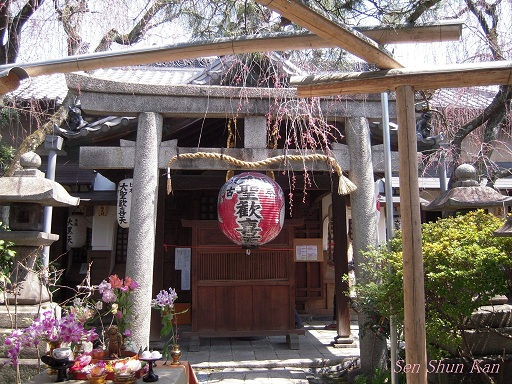 今出川界隈の桜 2012年4月8日_a0164068_14373111.jpg