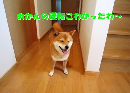 c0171368_2171020.jpg