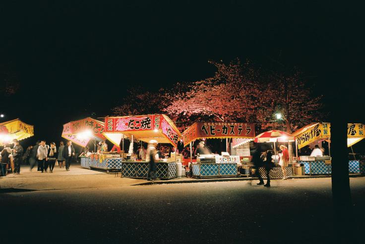 夜桜_c0195272_0193022.jpg