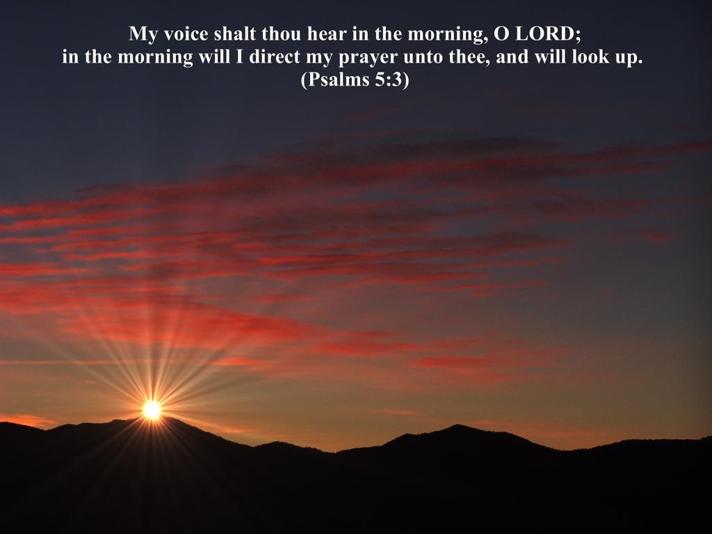 4月9日Ⅰ列王記10-12章『主の語りかけを聞く』_d0155777_8584050.jpg