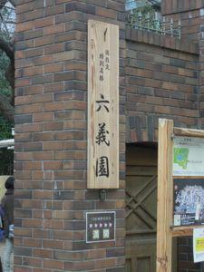 六義園のしだれ桜_e0030586_03326100.jpg
