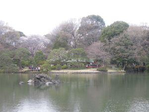 六義園のしだれ桜_e0030586_0332791.jpg